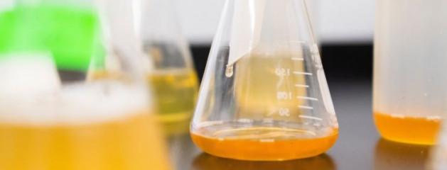 Роскачество исследует пивные напитки и предложит изменения в законодательство