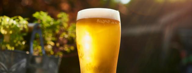 В Канаде разработали технологию варки пива из некрахмалистого сырья
