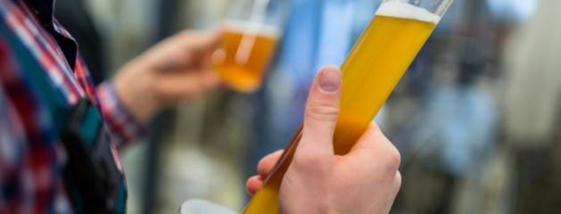 Австралийские учёные нашли молекулярные отличия между крафтовым и массовым пивом